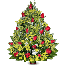 Arrangement of red roses in Cotuí (Sánchez Ramírez)