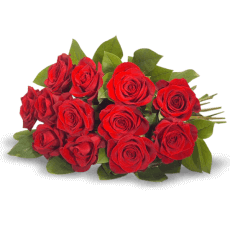 Bouquet of red roses in Cortés (Cuts)