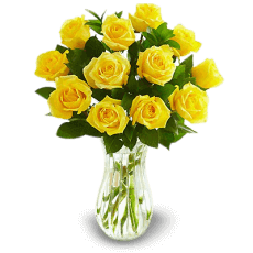 Yellow roses in Arecibo