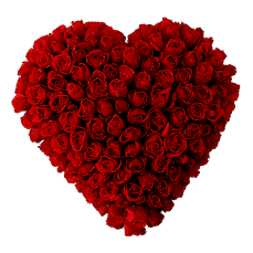 100 Roses heart in Cojedes