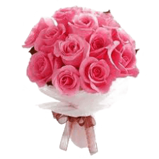 Bouquet of pink roses in Sergipe