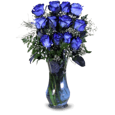 Blue Roses w Carrefour