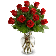 A dozen of red roses in Gracias a Dios (Thanks to God)
