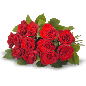 Bouquet of red roses in La Paz (Peace)
