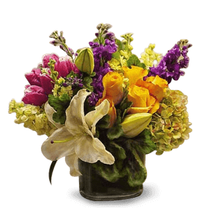 Elegante bloemen in Heredia