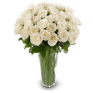 White roses in Kenscof