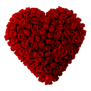 100 Roses heart in Juana Díaz